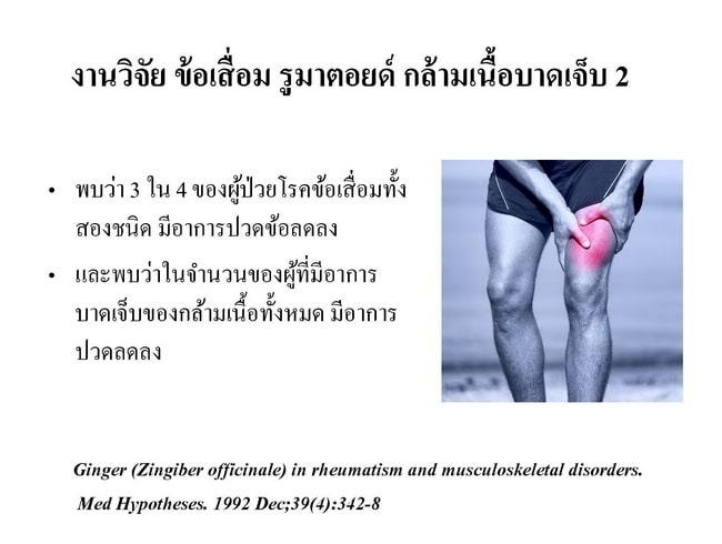 ขิงลดปวดโรคข้อรูมาตอยด์, ขิงลดปวดกล้ามเนื้อ, ลดการอักเสบ, กล้ามเนื้อบาดเจ็บ