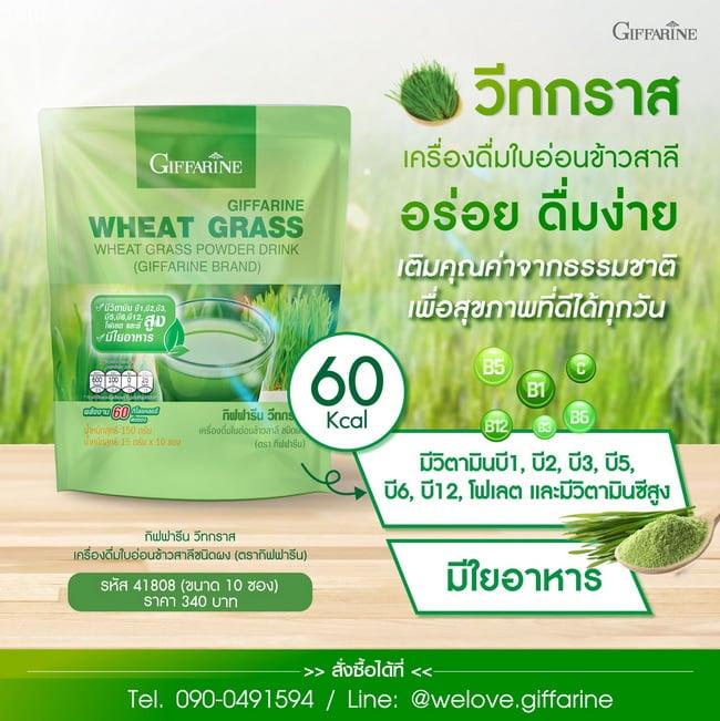 วีทกราส กิฟฟารีน Wheat Grass