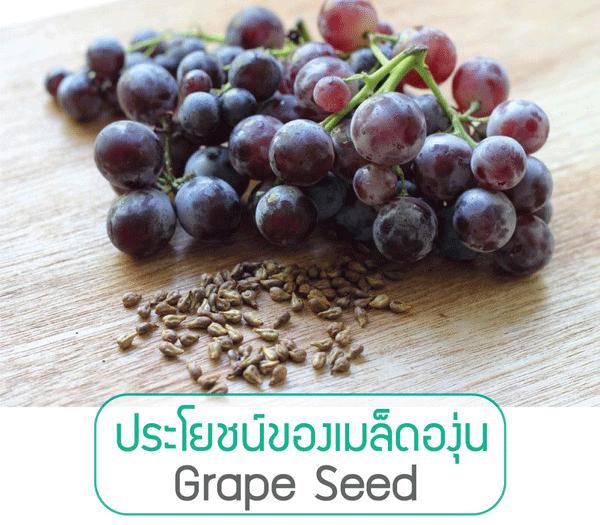 สารสกัดเมล็ดองุ่น, Grape Seed, Oligomeric proanthocyanidin, OPC