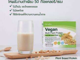Giffarine Plant Based Protein