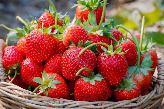 Strawberry, สตรอเบอรี่